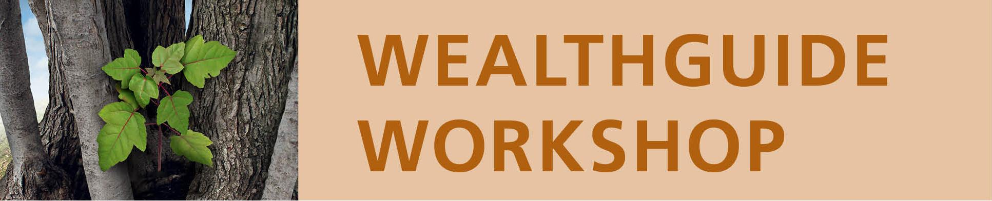 Wealthguide Graphic